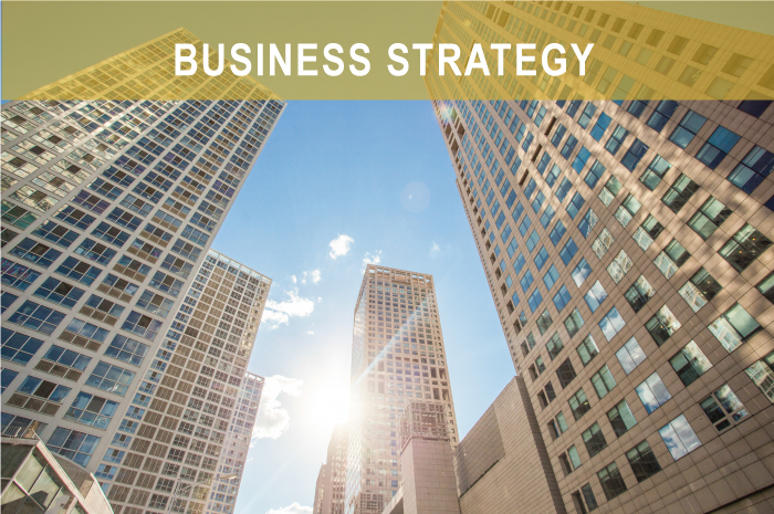 businessStrategy2